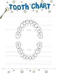 71 Correct Dental Tooth Numbering