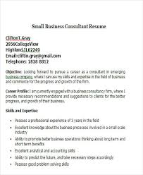 40 Business Resume Templates PDF DOC Free Premium Templates Delectable Business Skills For Resume