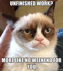 Unfinished work? More like no weekend for you - Grumpy Cat 2 ... via Relatably.com