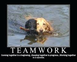 Teamwork Quotes Funny Enchanting Teamwork Quotes Funny With Funny Motivational Quotes Teamwork Quotes