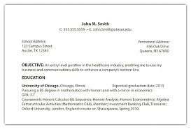 What Put The Objective Section Resume Template Technical Skills