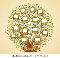 How To Make Family Tree On Chart Paper Family Tree Stock Vectors Images Vector Art Shutterstock