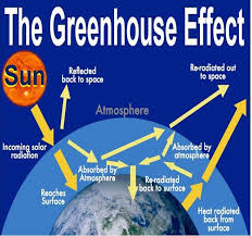 the greenhouse effect essay torg oxbridge essays the greenhouse effect essay
