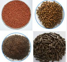 Best Solutions to Problems in Fish Feed Production Process