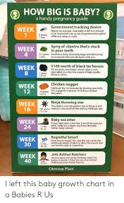 Baby Growth Chart By Week In Womb How Big Is Baby A Handy Pregnancy Guide Week Government