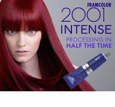 Professional Hair Products Framesi