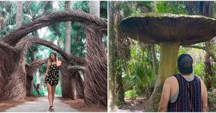 mckee botanical garden miami is a