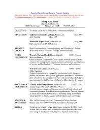 Resume Resume Template Usa Example Social Work Resume Customer