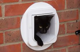 cat flap installation in a brick wall
