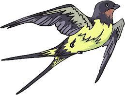 Resultado de imagen de dibujos de golondrinas