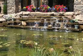 Garden Ponds Designs Delectable Ponds R' Us Water Feature Construction Maintenance Charlotte NC
