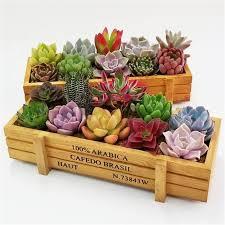 fysho retro wooden flower herb planter