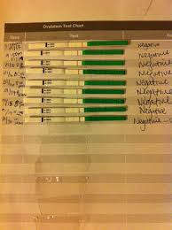 65 Prototypal Ovulation Record Chart