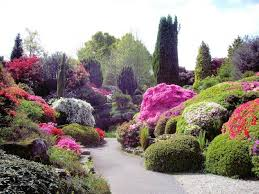 Small Picture Small Rose Garden Design Ideas Best Garden Reference