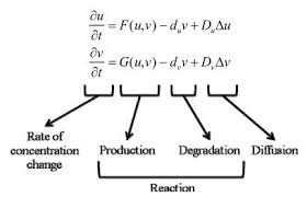 alan turing s reaction diffusion model simplification of the  figure