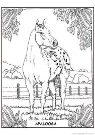 Small Picture 69 best Colouring Pages Horses images on Pinterest Coloring