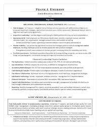 Team Leader Sample Resume – Amere