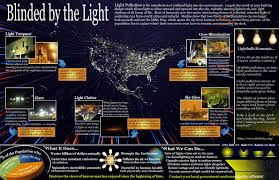 Are Bats Blinded By Light Bat Conservation International As Light Pollution Increases