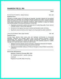 key skills resume examples animator artist free resume samples blue sky resumes  key professional skills nursing
