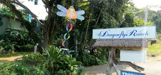 dragonfly ranch photo gallery