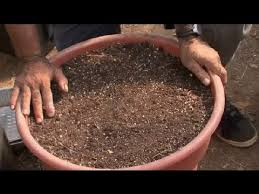 how to make soil for a raised bed