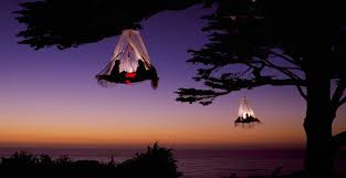 BubbleHotelFrancetreehouse Glamping Extremeglamping Treehouse Vacation California
