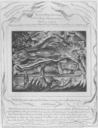 william blake s masterpiece illustrations of the book of job  job s evil dreams