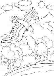 Kleurplaten Wilde Vogels Schattig Eagle Vliegen Onder Het Bos