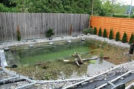 outdoor landscaping ideas. Backyard Easy Landscaping Ideas Ingenious Design Project Swimming Pond Diy Outdoor Fairy Garden . I