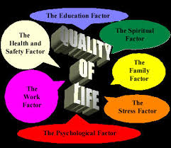 quality of life essay essay about quality of life codeblu essay about quality of life codeblu