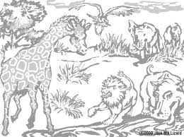 Small Picture African Animals Coloring Pages GetColoringPagescom