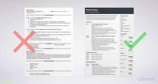 Sample Entry Level Resume Beginners Resume Template Free Download Entry Level Resume Sample 25
