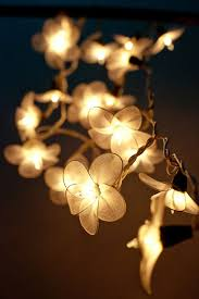 Flower String Lights, Floral Lights, Fairy Lights Bedroom, Hanging Lights,  Indoor String Lights, Decorative Hanging Lights