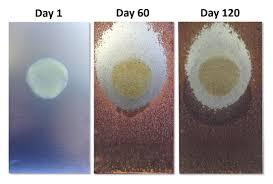 wd 40 specialist spray stay gel lubricant no drip formula 120 day test