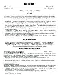 Accounts Executive Resume Format Account Senior Sample Manager Doc