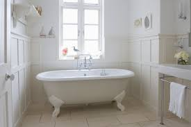 How To Get Rid Of Bathroom Mold Inspiration Bathroom Pests Watch Out For These Water Lovin Bugs Vulcan