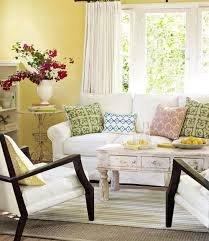 chic living room dcor:  living room decorating ideas designs and photos