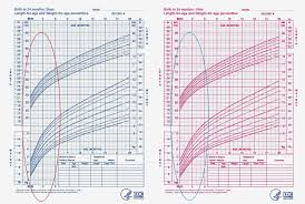 Breastfed Baby Weight Gain Chart Best Picture Of Chart