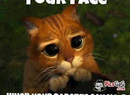 Your Funny Face Meme Funny Picture Which is Humorous To Make Smile via Relatably.com