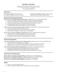 Microsoft Excel Resume Examples Download Now Resume Samples Free