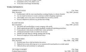 Vanderbilt Resume Builder Online Instructor Sample Resume