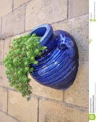 blue glazed garden pots blue glazed pot stock image image of plant home blue 15484711