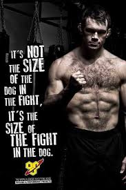 Mma Quotes Simple 48 Best Short Quotes With Beautiful Images Inspiration Pinterest