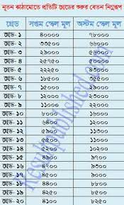 13 Comprehensive Government Pay Scale