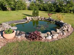 how to set up a koi pond the ultimate