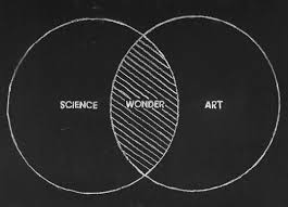Art Venn Diagram Venn Diagram Art Science Wonder Visualuzations Art Words
