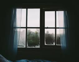 Window Treatments Near Me