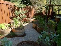 barrel garden. Wine Barrel Garden