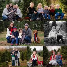 These sessions were fun and made an adorable family photo for Christmas  cards, or just because! I might just have to offer them again next year!