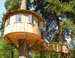 Season 2015 Pete Nelson Tree Houses Images   Todd Graves Gets Treehouse Builder Pete Nelson